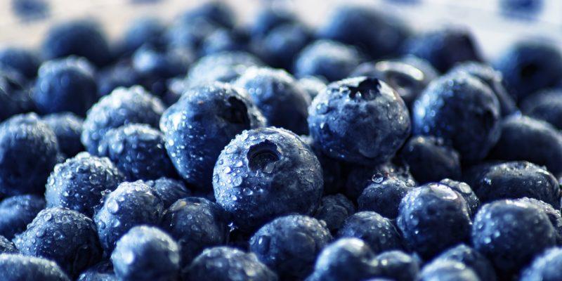 blueberry-3460423_1920